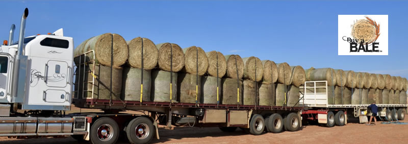 Hay Mate: Buy a Bale - A Concert For The Farmers
